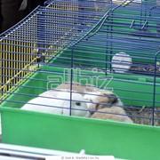 Клетки для животных фото