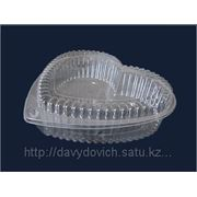 Упаковка из пластика Т-43 фото