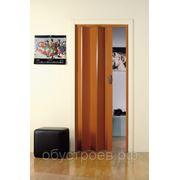 Дверь-гармошка Monica 83x204 см. вишня фото