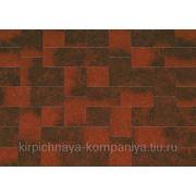 Тротуарная плитка Бельпассо Премио красно-черный фото