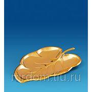 """AR-1001 тарелка """"лист"""" (юнион) (868856) фото"""