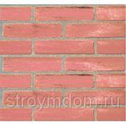 Декоративная панель Forte Le Murine Linea Brick Terra di siena fuga grigia 315 фото