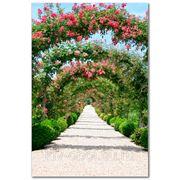 Фотообои Цветущая аллея