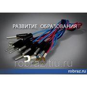 Комплект соединительных проводов (10 шт.) фото
