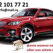 выкуп авто в черемисском фото