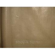 Пленка армированная,200мкр, ширина-2м(рулон-25м/п) фото