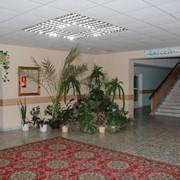 Отдых и лечение в Тульской области. фото
