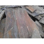 Плитняк Златолит - Кора дерева фото