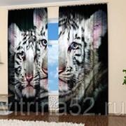 "Фотошторы ""Белые тигры"" фото"