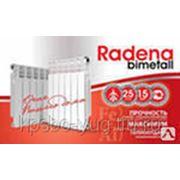 Радиатор биметаллический RADENA 350х80 (1сек.) фото