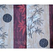 KYNIO - бамбук фото