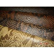 Искусственная кожа King Cobra фото