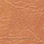 Искусственная кожа Индии, Турции,Германии фото