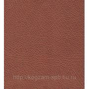 SANCHO CP 3257 (бронза) искусственная кожа