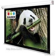 Экраны KAUBER Econo Electric 4:3 Matt White 244x183 фото