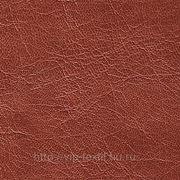 Обивочная ткань — искусственная кожа Fiore (Фиора)