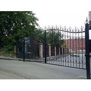 Ворота кованые 7
