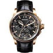 Мужские наручные швейцарские часы в коллекции Xseba Rodania RD-2505423 фото