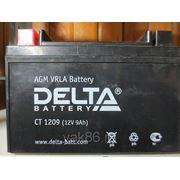 "Аккумуляторная батарея ""DELTA""CT - 1209"