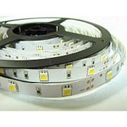 Лента светодиодная Jazzway PLS 5050 30LED, красный фото
