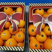 продаем апельсин фото
