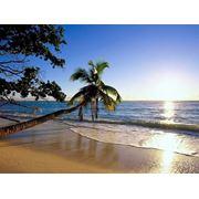 Пляжные туры фото