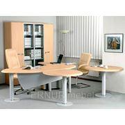 мебель для кабинета директора фото