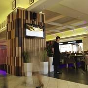 Профессиональный проект кафе, ресторана, клуба. фото