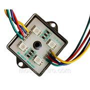 Светодиодный модуль LM 5050-4 CW фото