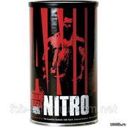 UN Animal Nitro 44 пак фото