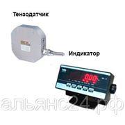 Динамометр электронный на растяжение ПетВес ДОР-3-0.1И(1) с WI-4 фото