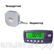Динамометр электронный на растяжение ПетВес ДОР-3-0.1И(1) с R320 фото