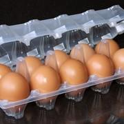 Упаковка для яиц ОВОПАК фото
