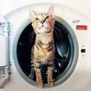 Подключение стиральной машины фото