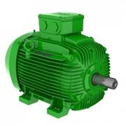 Электродвигатели IP55 – Чугунный корпус – Premium Эффективность - IE3