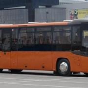 Автобус пригородный пассажирский МАЗ-231 фото