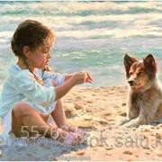 Картина по номерам Малышка с собачкой на берегу фото