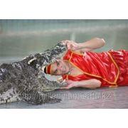 Поощрительная поездка в Тайланд - Тропическая сказка фото
