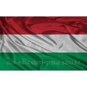 Образование в Венгрии на английском языке фото