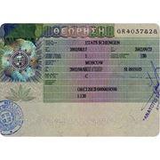 Визовая поддержка и регистрация