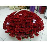 Корзина из 301 розы фото