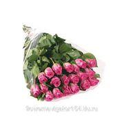 Букет из 21 розы розовой фото