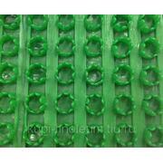 Щетинистое Покрытие Голиаф Зеленый фото