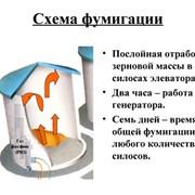 Фумигация зерна в силосах элеватора без пересыпания и перемещения зерна фото