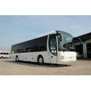 Пригородный Автобус MAN LionsRegio фото