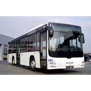 Автобус MAN Lion's City LE (полунизкопольный) A78 фото