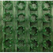 Щетинистое Покрытие Голиаф Темно-Зеленый фото
