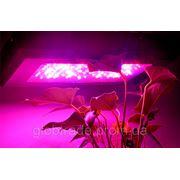 """Гидропонная фитолампа """"Sense-milla""""для роста растений - 240 Ватт, 80 светодиодов, 2x УФ СВЕТОДИОДА фото"""