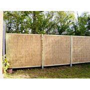 Камыш забор ограда фото