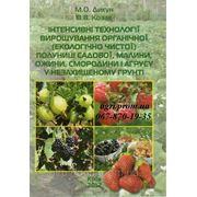Інтенсивні технології вирощування органічної полуниці садової, малини, ожини, смородини і агрусу фото